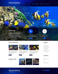 petshop website design image