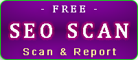 free SEO scan and report button