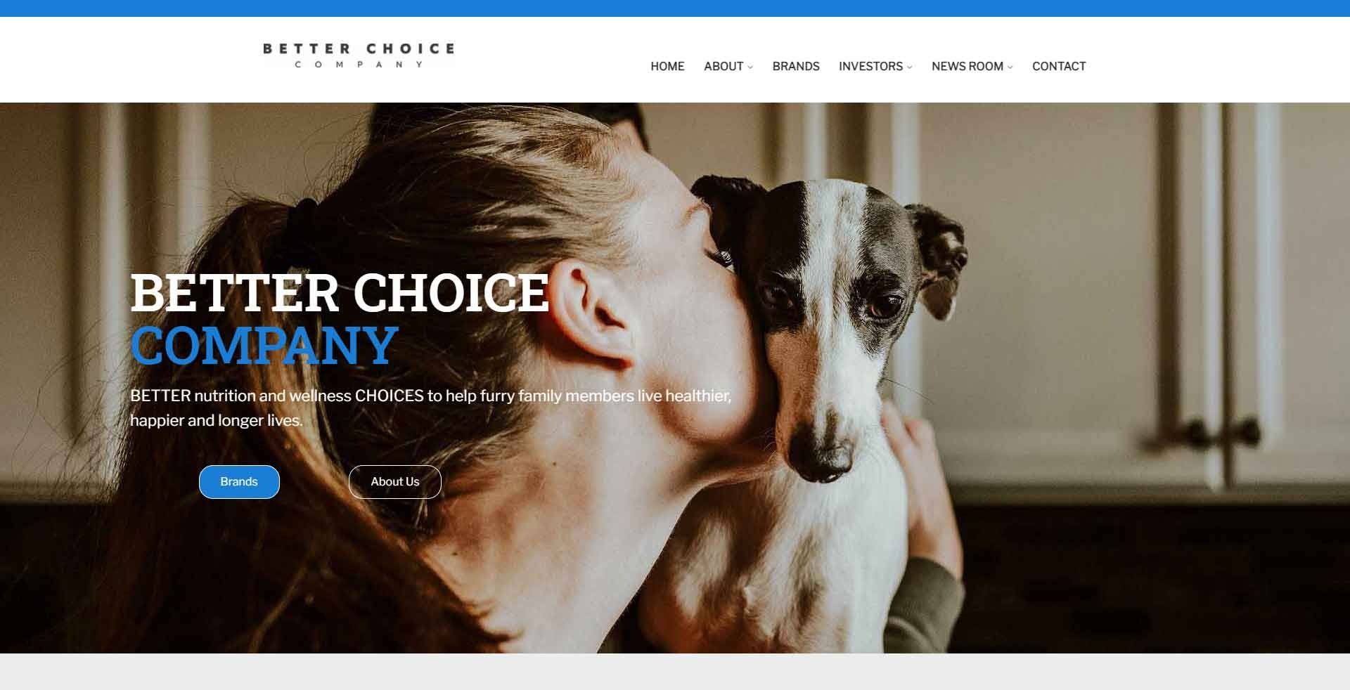 Investor & Holdings Company Website Design